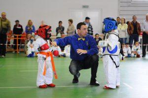 karate-851715_1920